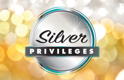 Silver Privileges